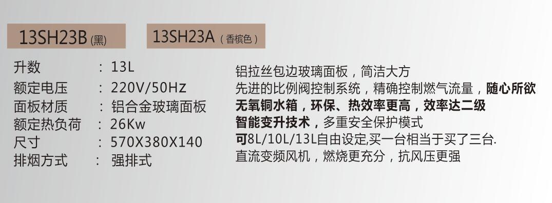 13SH23A(香槟色)..jpg